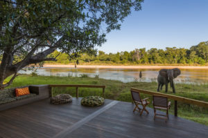 Elephant at Kapamba