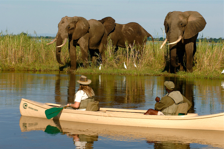 Chiawa canoe eles reflection