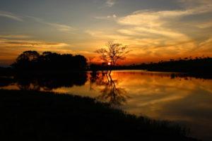 Chiwale Dam, Satemwa, Malawi
