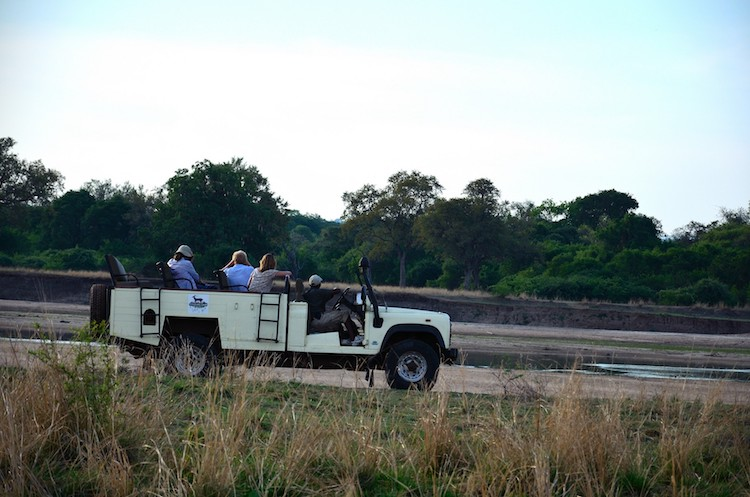 Driving Safari Wildlife Camp