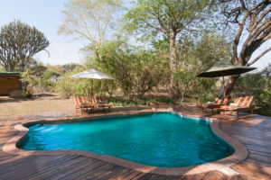 Mvuu Lodge swimming pool