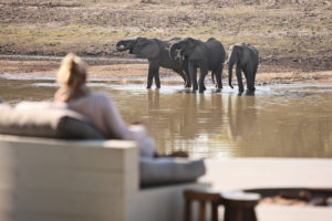 Chinzombo, Luxury South Luangwa