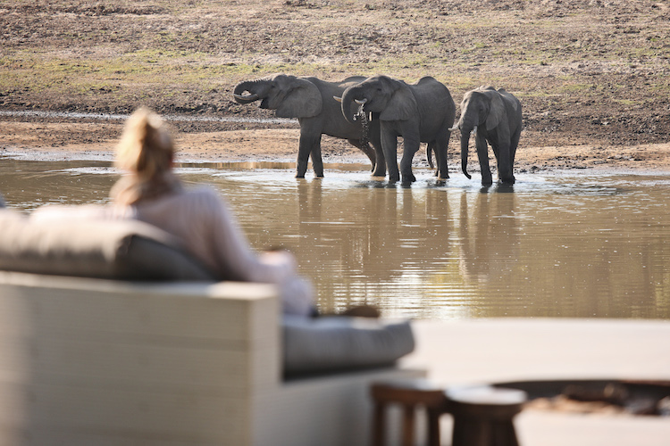 Chinzombo, Luxury South Luangwa