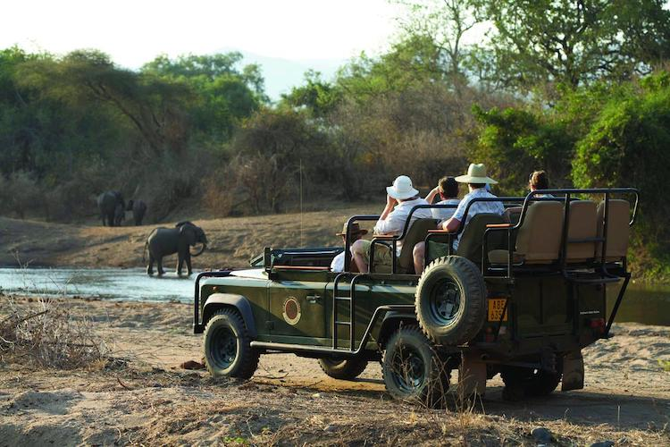 game drive royal zambezi national park