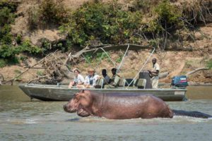 nsefu river safari