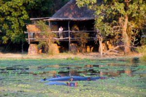 Mfuwe Lodge, South Luangwa National Park