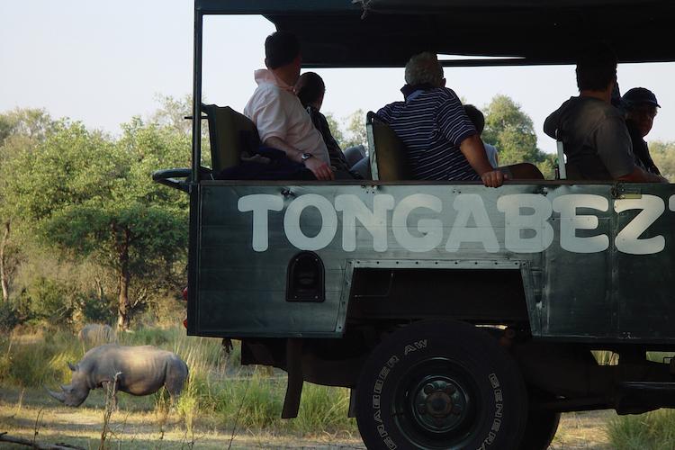 rhino tongabezi
