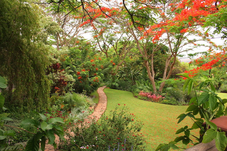 garden path, Kumbali Country Lodge