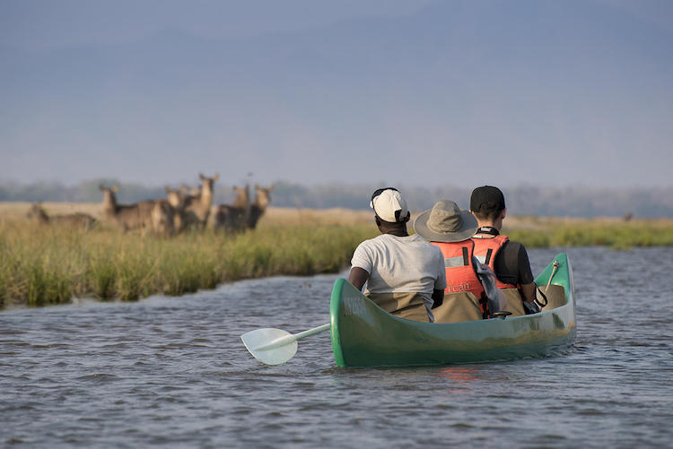 Canoeing with Zambezi Expeditions