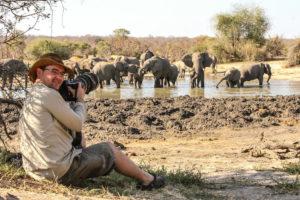 Elephants drinking at Hwange