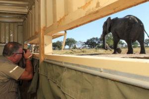 imvelo safari hideout
