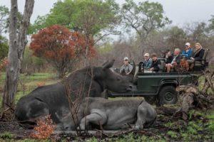 rhino drive umkumbe