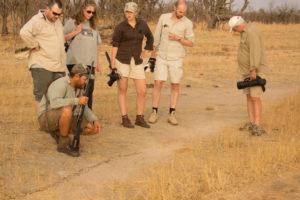 walking safari at Hwange National Park