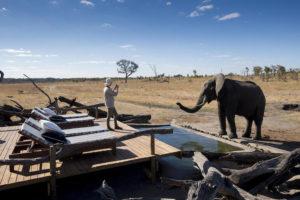 woman and elephant, Hwange National Park