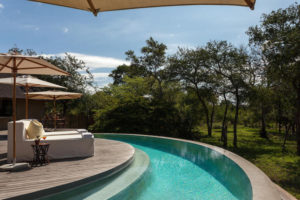 Thornybush River Lodge pool