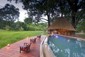 Nkwali Pool Area